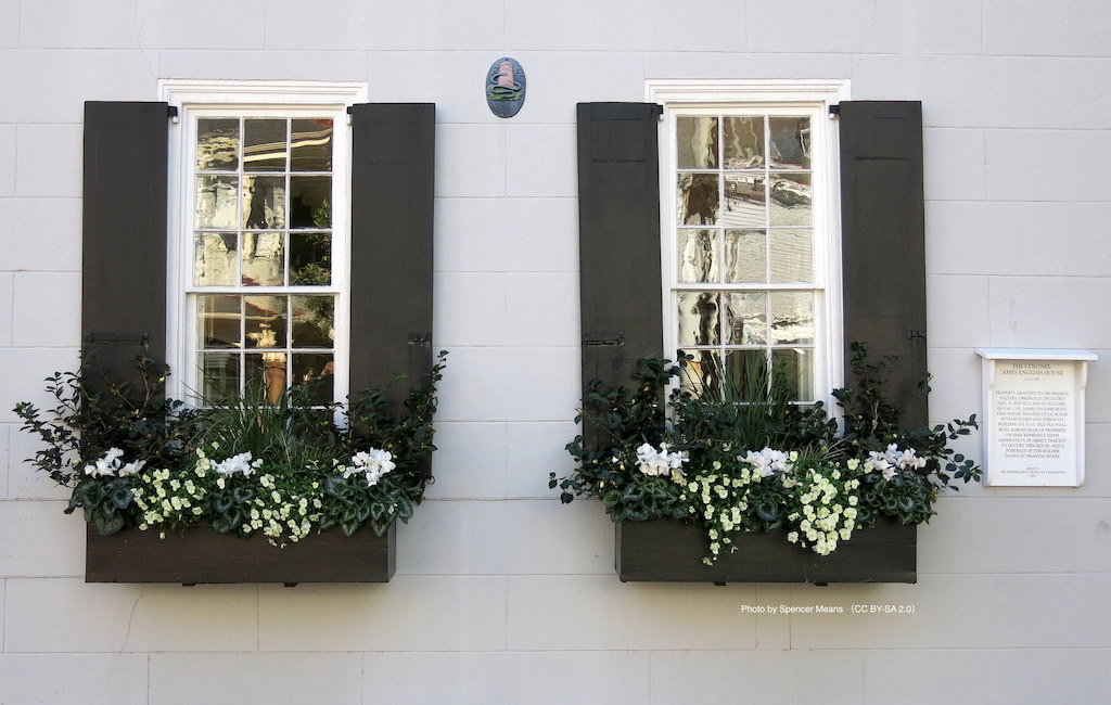モノトーンの建物に合わせてウィンドウボックスを設え、植物も白と黒で統一。左右対称に植え込まれて、モダンな雰囲気です。