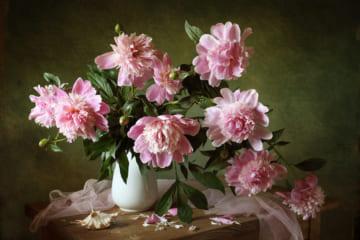 アネモネ咲きと呼ばれるゴージャスな大輪種。