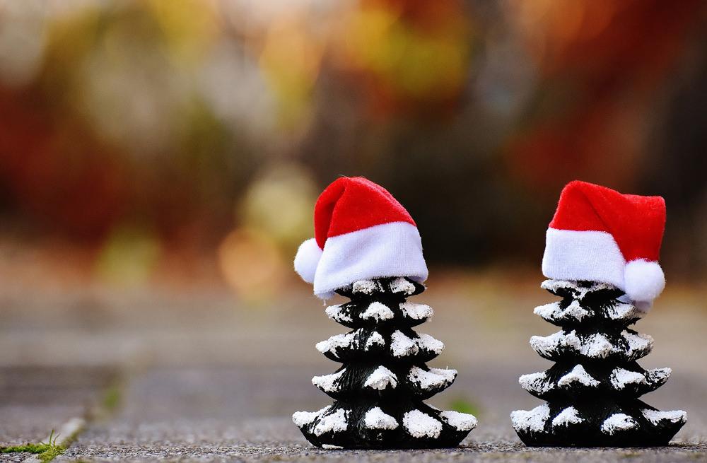 マツボックリをクリスマスツリーに見立てたこんな可愛らしい飾りも。お子さんとのクラフトにオススメです。