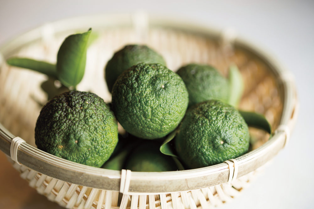 青柚子 young green yuzu 完熟する前の、夏から晩夏にかけての柚子です。青い果実の果皮はすりおろし、青唐辛子、塩と合わせれば「柚子胡椒」ができます。