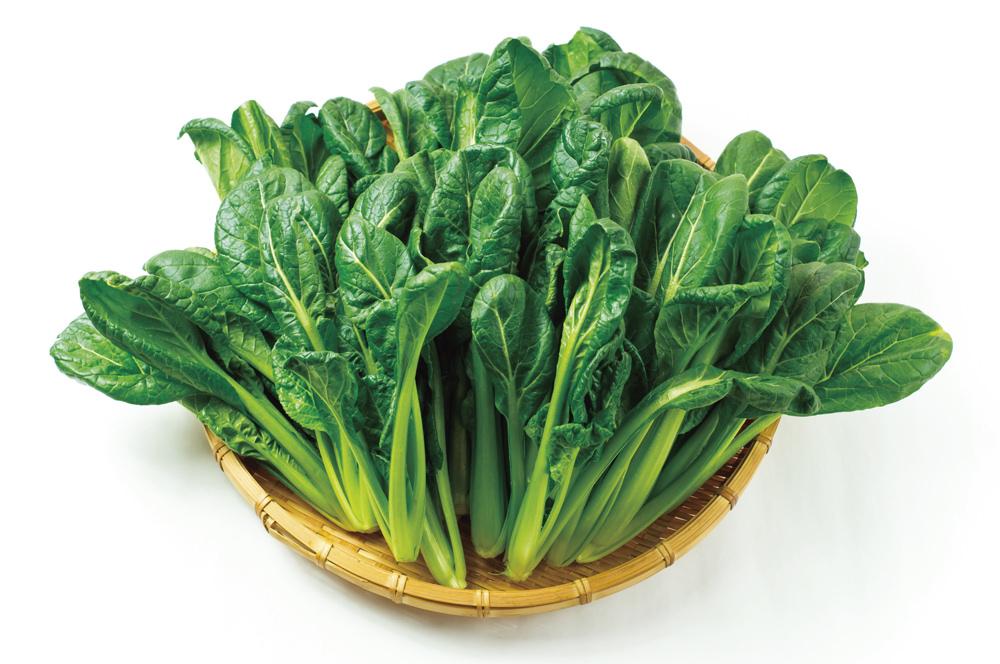 小松菜 「寒じめ小松菜」もほうれん草とほぼ同様に作ります。寒じめは甘くなるだけでなく、ビタミンやカロテノイドなどの栄養価も上がります。