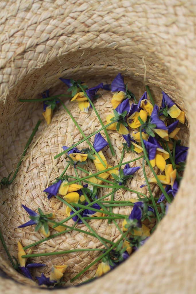1株から1回でこんなに取れました。単純作業ながら、花のひんやりとした質感やほんのり青い香りが心地よいですよ。意外とリフレッシュできるものです。