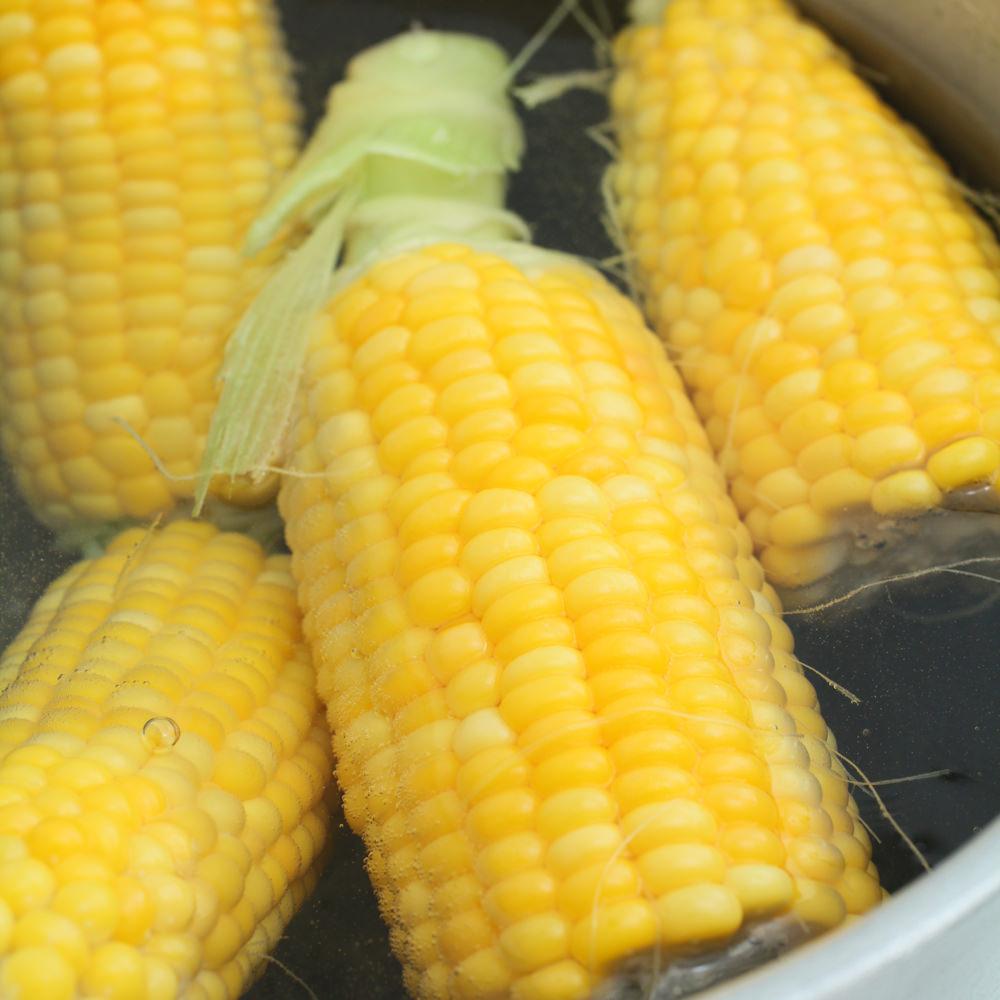 ①大きな鍋に少量の塩を入れ、湯だったら鍋に収まる程度に割ったトウモロコシを入れます。1〜2分程度で実の色が鮮やかになったら、すぐ取り出して冷まします。硬めに茹でるのがポイント。