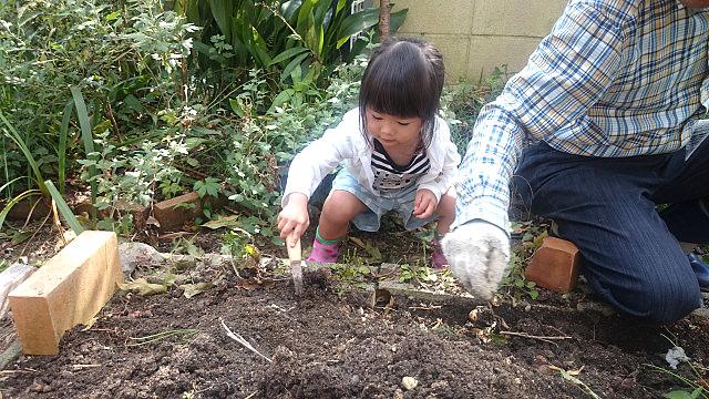 子どもが、植物を育てる楽しみを学び、体験することが大切です。