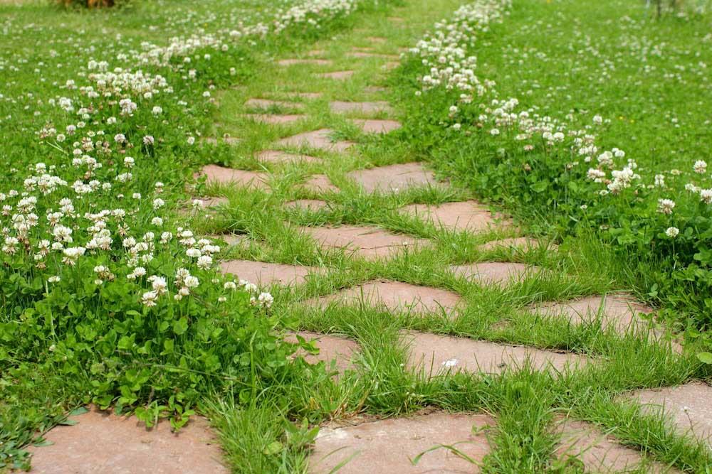 ランダムに石を敷く小道