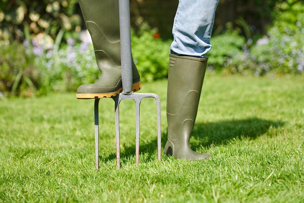 芝生のエアレーション