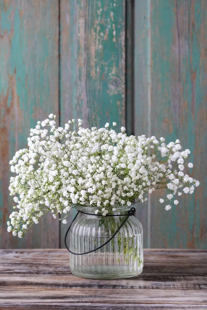 カスミソウだけのシンプルな花瓶。アレンジでは他の花に添えられることが多い名脇役ですが、実はカスミソウだけで活けてもかなり可愛い。