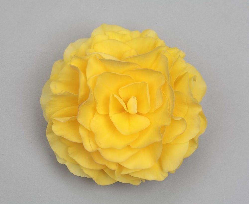 イエローインプ/クリアなレモンイエローの大輪花を咲かせる品種。大きく成長する草姿の中に、明るい黄色の花がひときわ目を引きます。