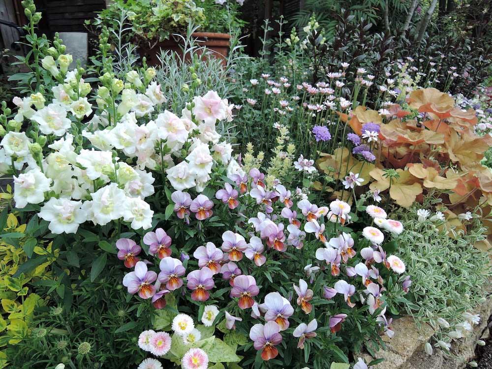 ガーデニングを楽しむ花壇