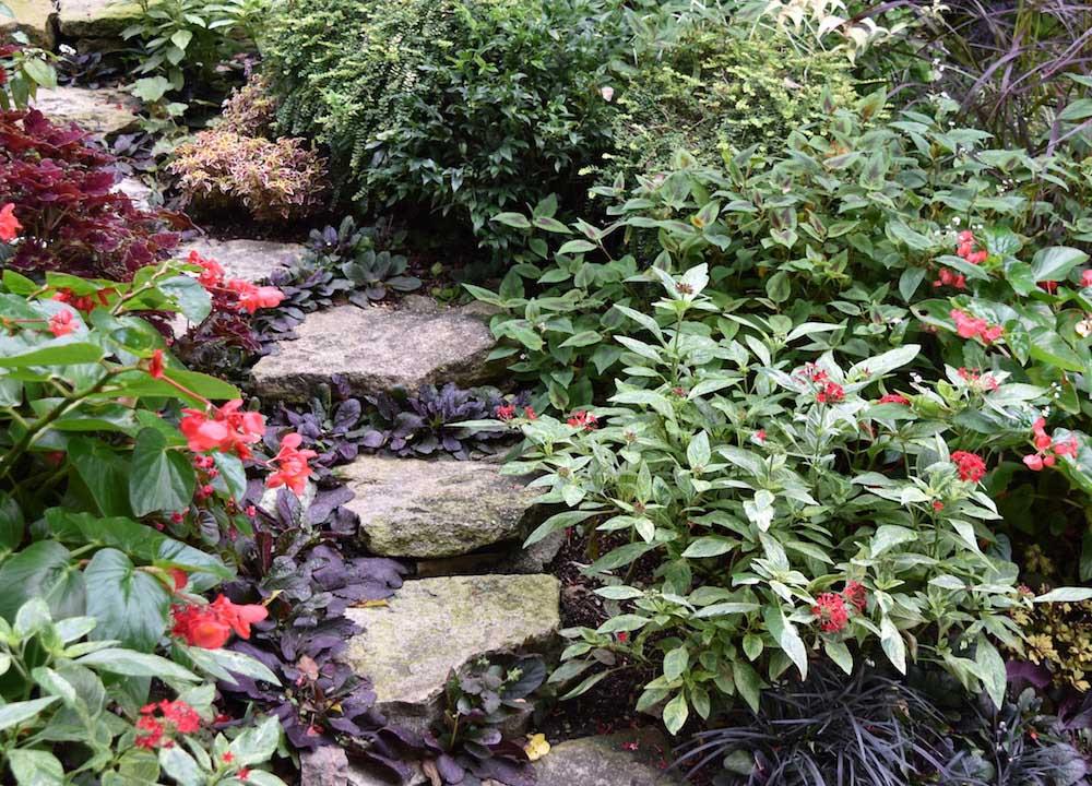 ガーデニングを楽しむ花壇づくり