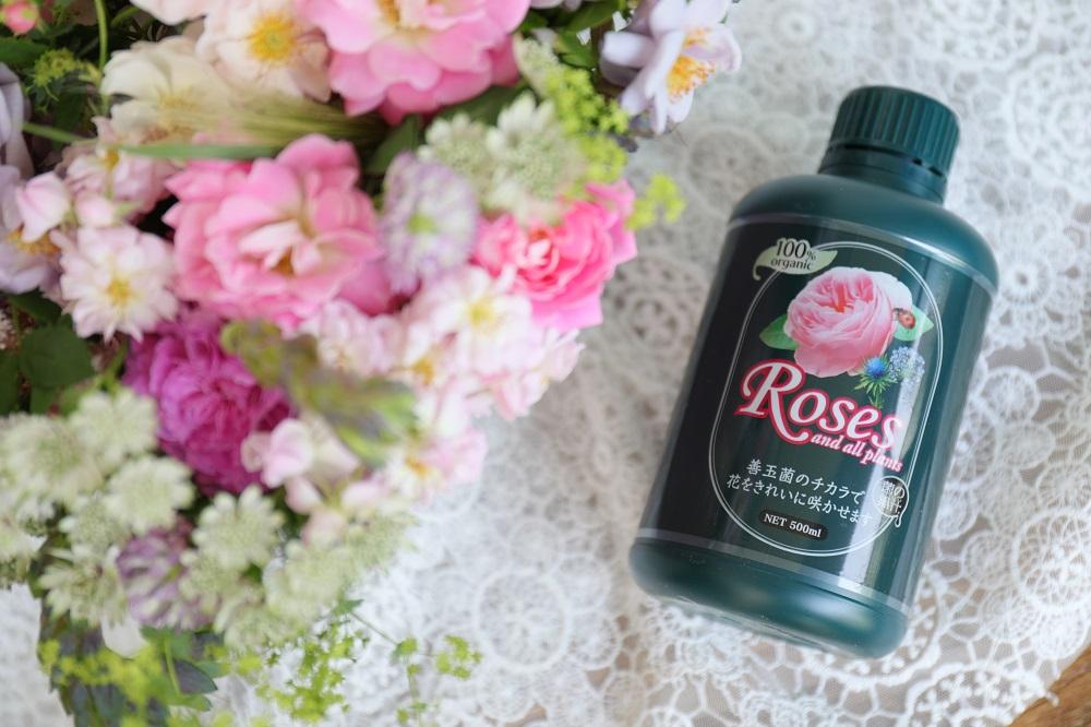 菌の黒汁Roses