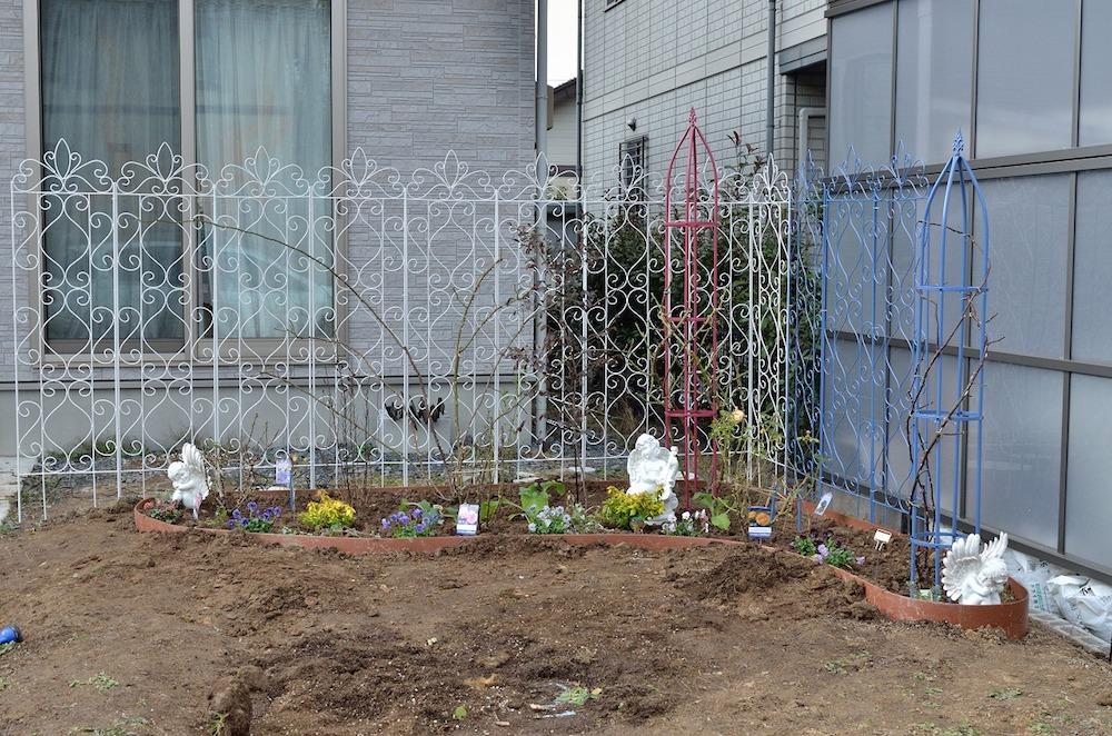 初心者さん必見!バラの花壇の作り方-花壇手前にパンジー-