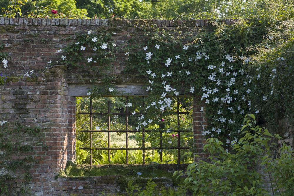 レンガ塀に開けられた窓を縁取るクレマチス。©National Trust Images/Jonathan Buckley