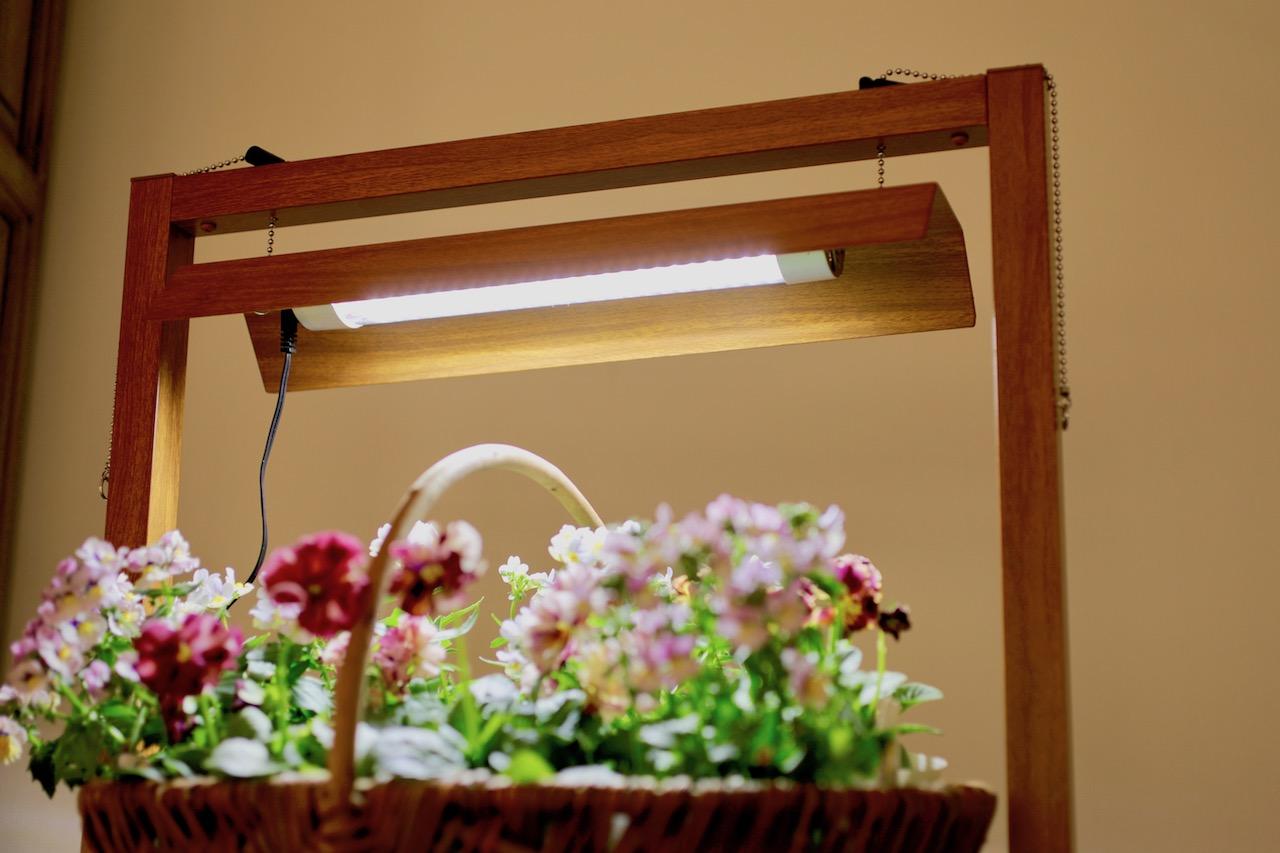 植物栽培の光
