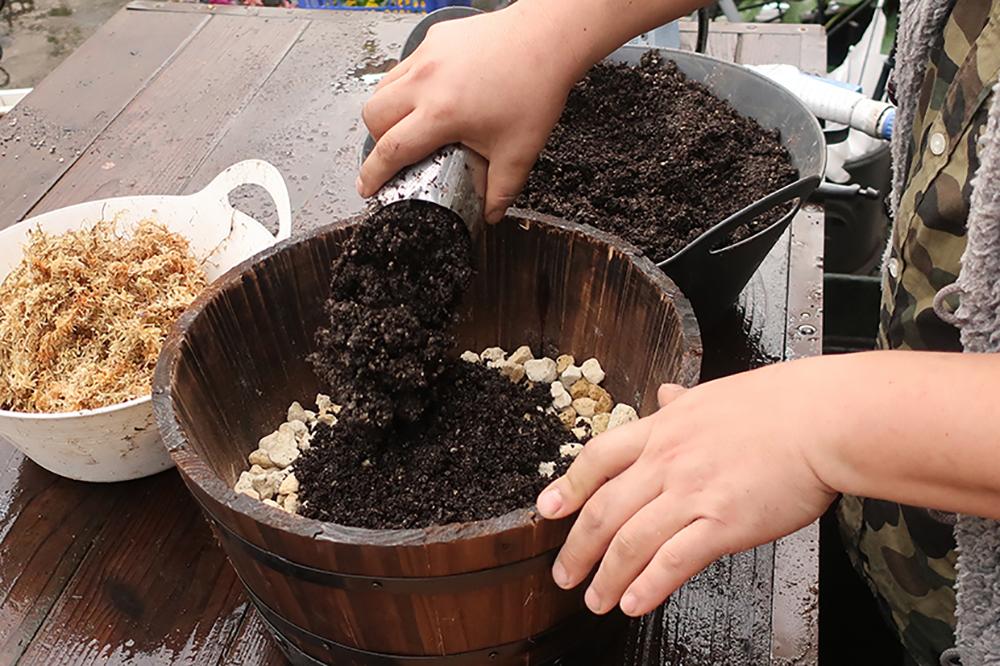 ハボタンとシクラメンの冬の寄せ植え〜鉢の準備