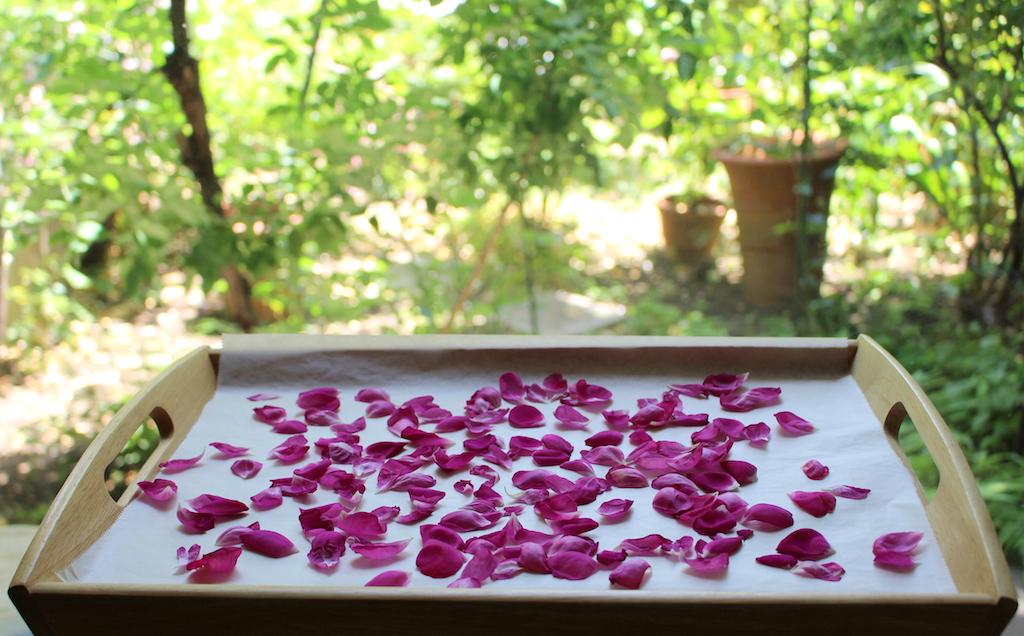 バラの花びら 乾燥