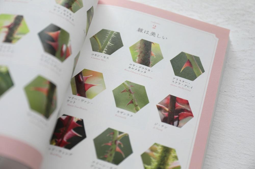 ときめく薔薇図鑑