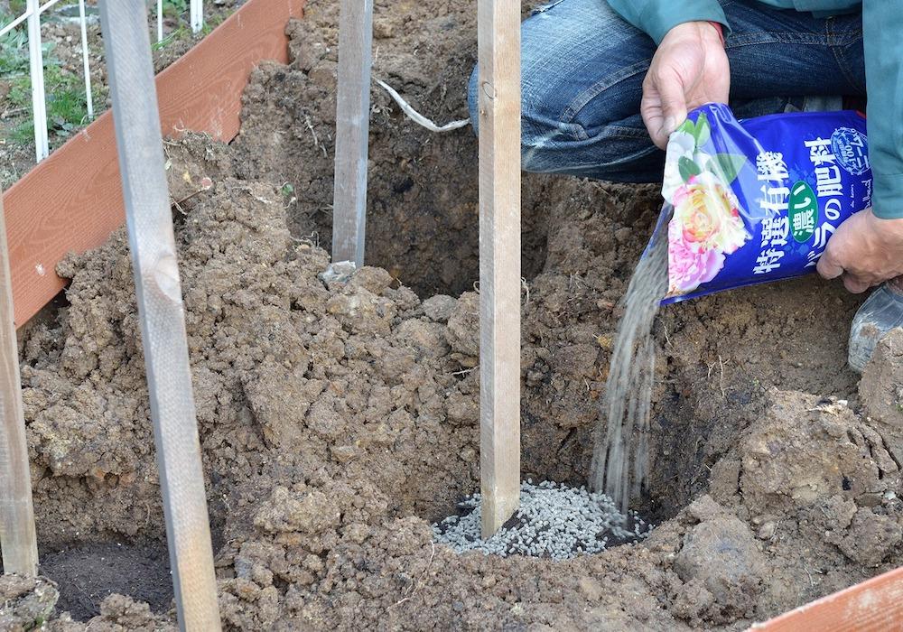 初心者さん必見!バラの花壇の作り方-たい肥を入れる-