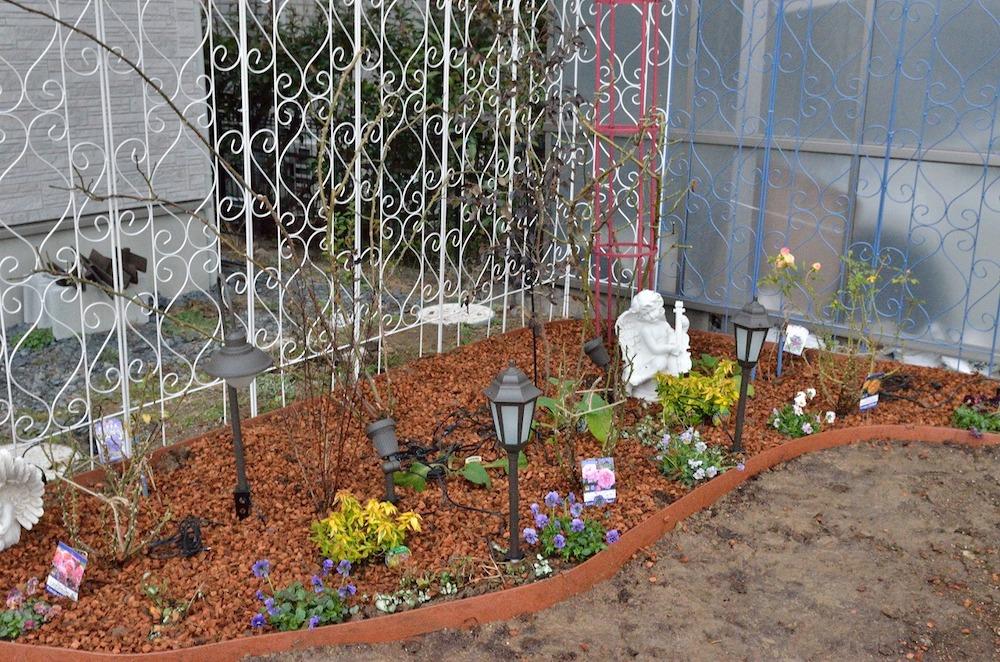 初心者さん必見!バラの花壇の作り方-表面にバークを敷いてマルチング-