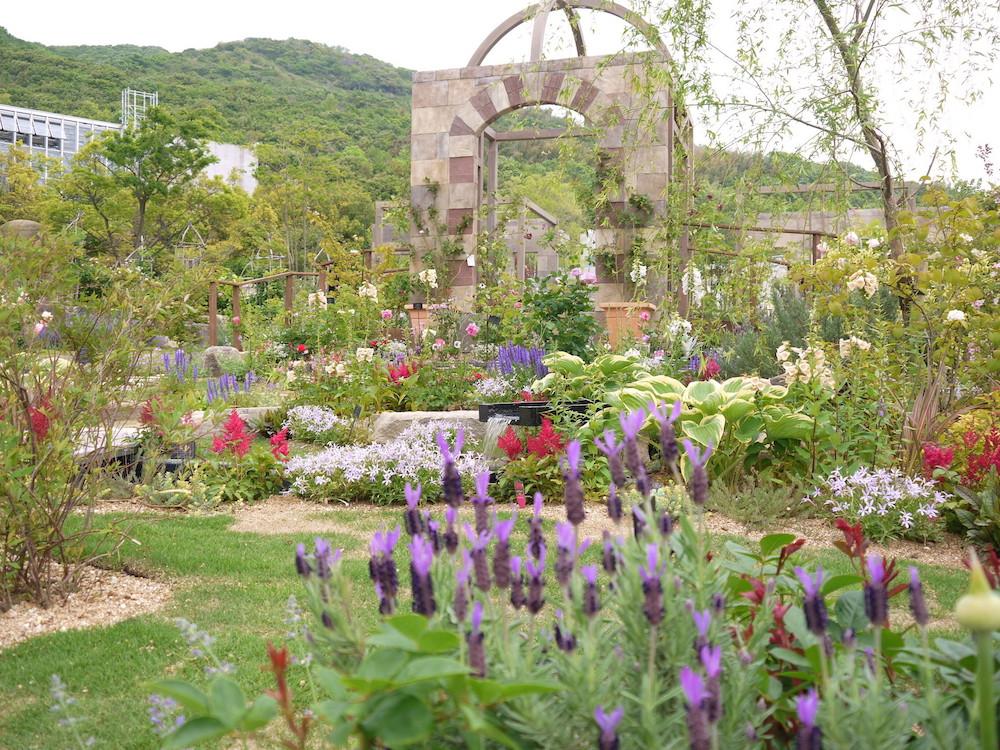 奇跡の星の植物館 ガーデン