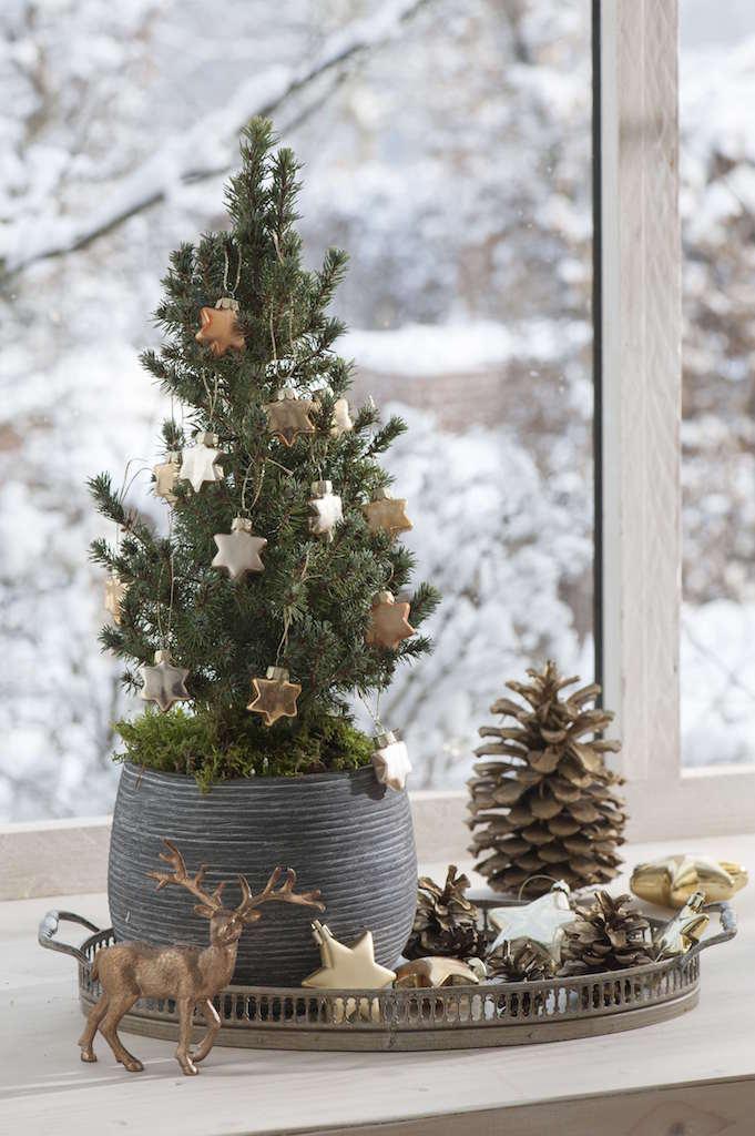 窓辺のコンパクトなクリスマスツリー