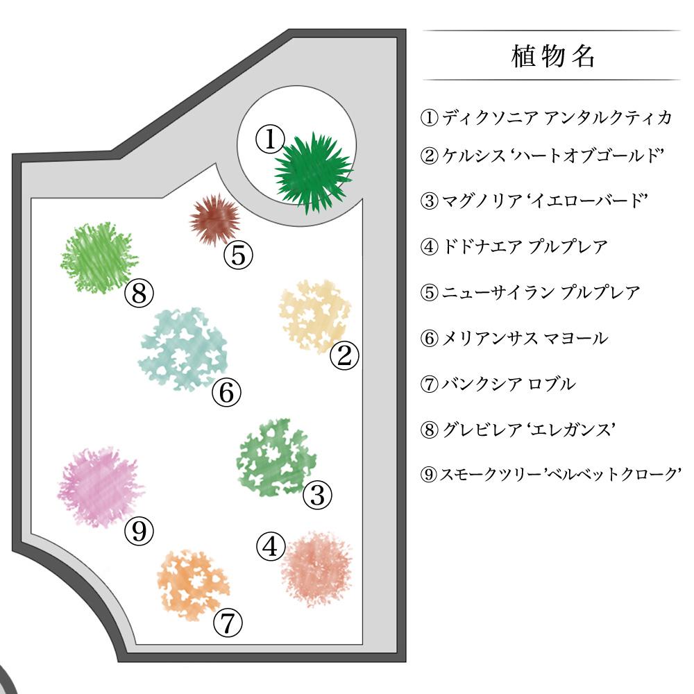 植物の配置図