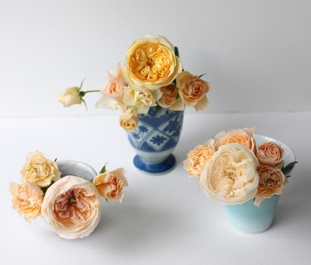 湯呑茶碗に活けたバラ