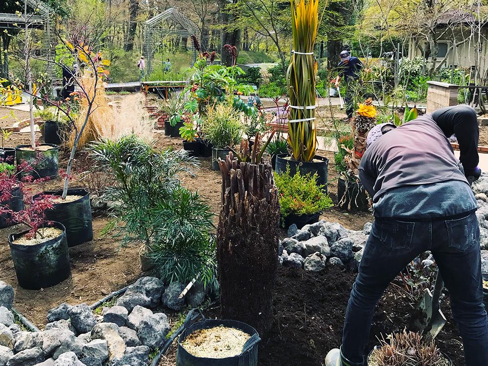 「国営武蔵丘陵森林公園」内で公開された乙庭初の展示ガーデン制作風景