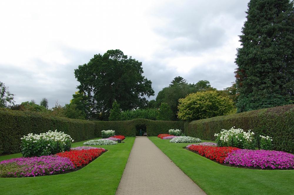 鮮やかな花壇