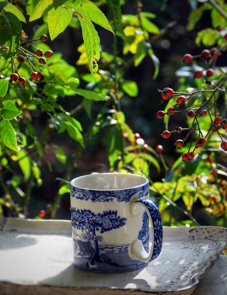 ローズヒップのハチミツ漬けをお茶に
