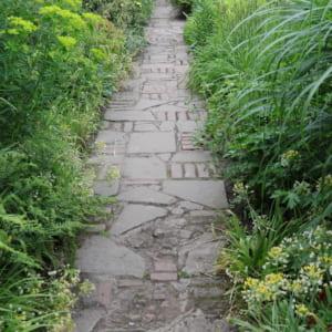 イギリスの庭の小道