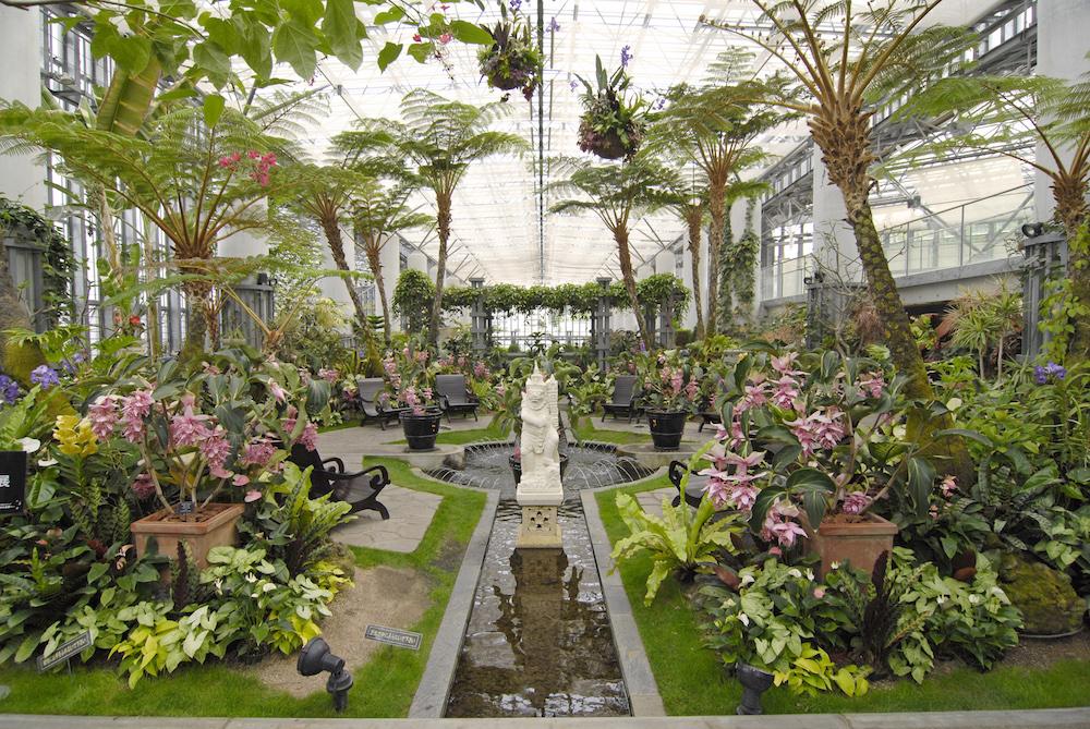 奇跡の星の植物館 トロピカルガーデン