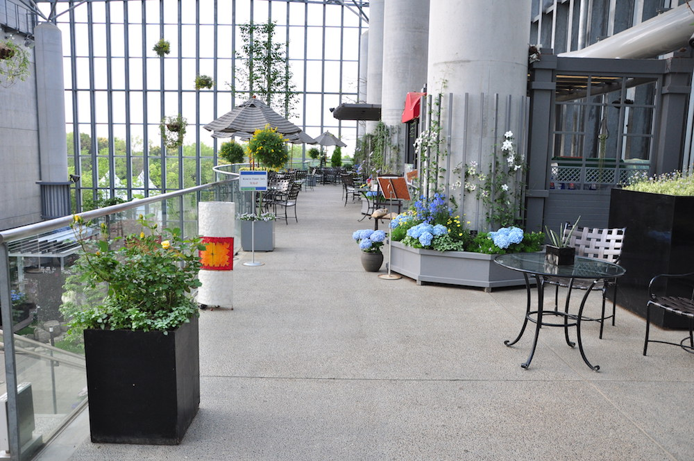「奇跡の星の植物館」内「ミラクルプラネットカフェ」