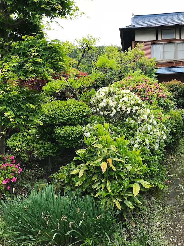 乙庭の植栽