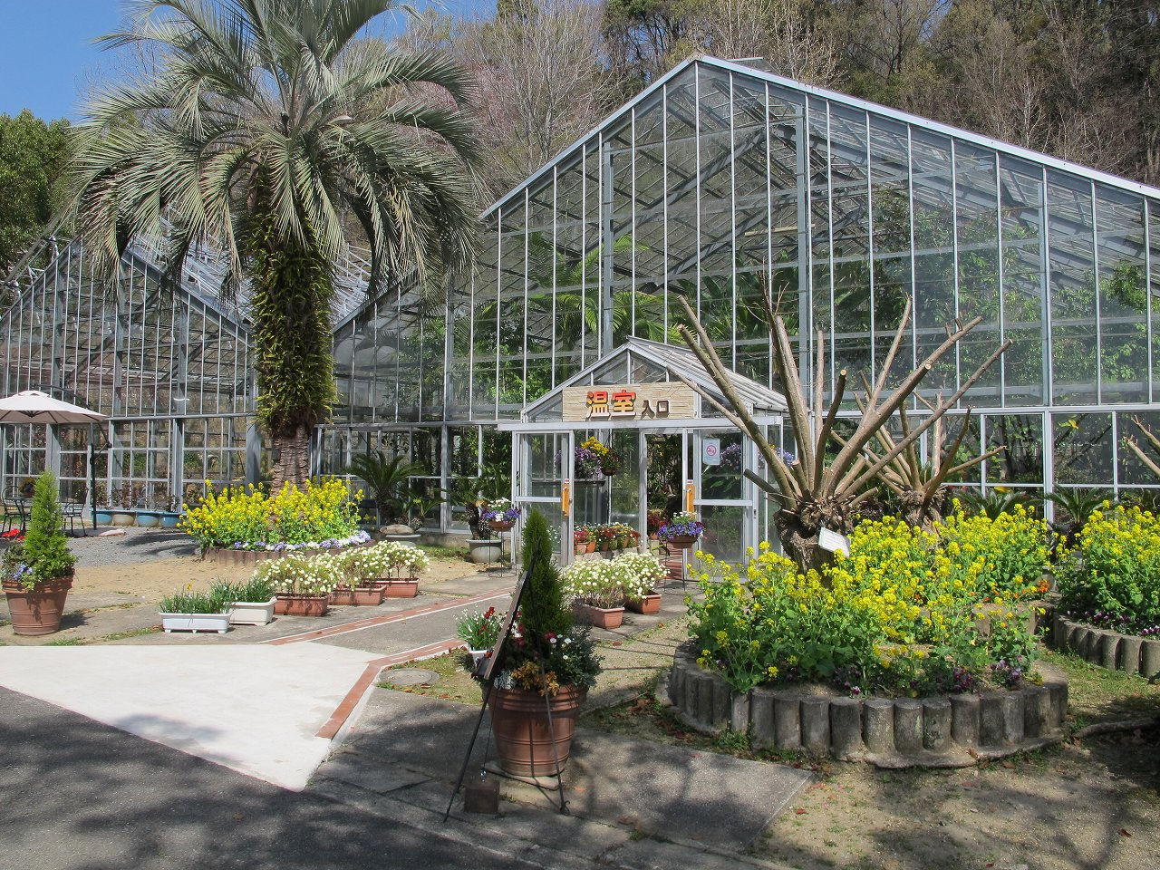 「和歌山県植物公園 緑花センター」温室