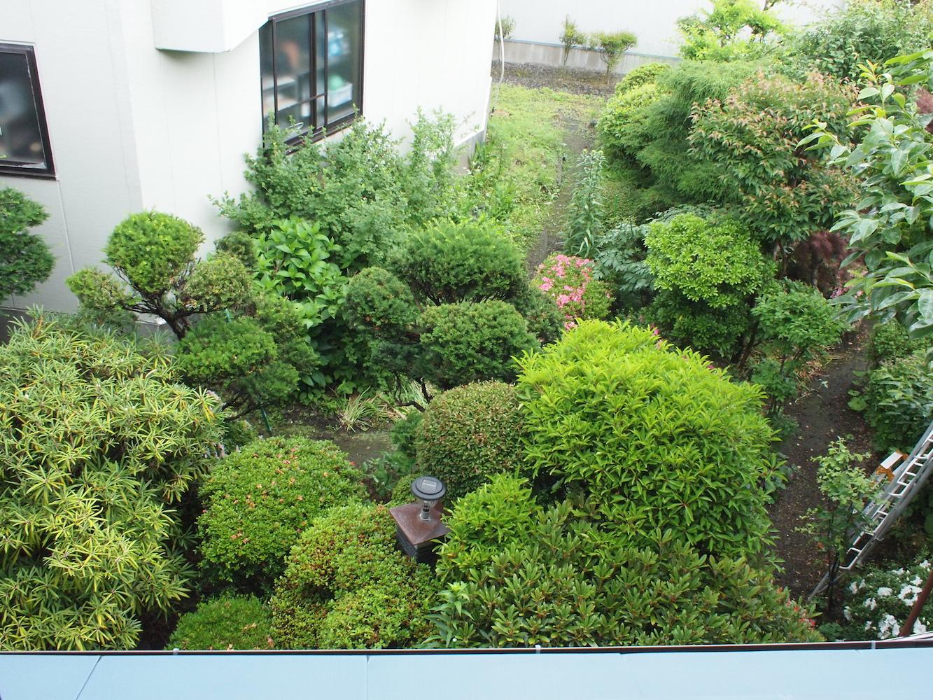 改修前の庭景色