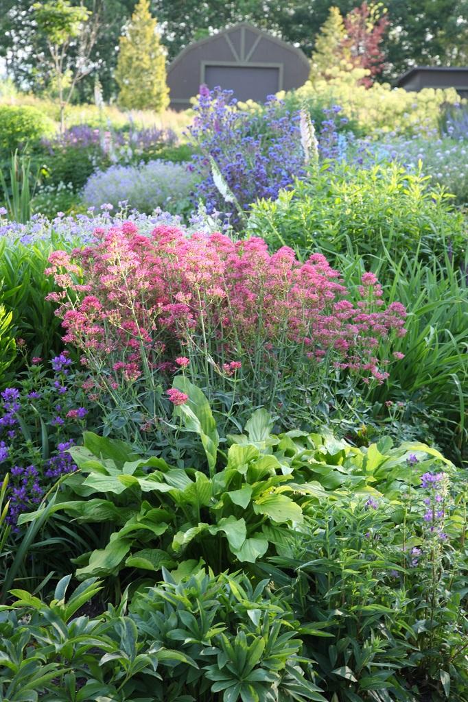 上野ファーム ノームの庭の景色