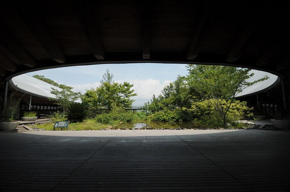 「牧野富太郎記念館・展示館」の中庭