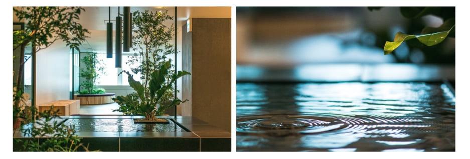 水滴が植物の葉に落ち、水面には波紋が浮かぶparkERsの水什器。