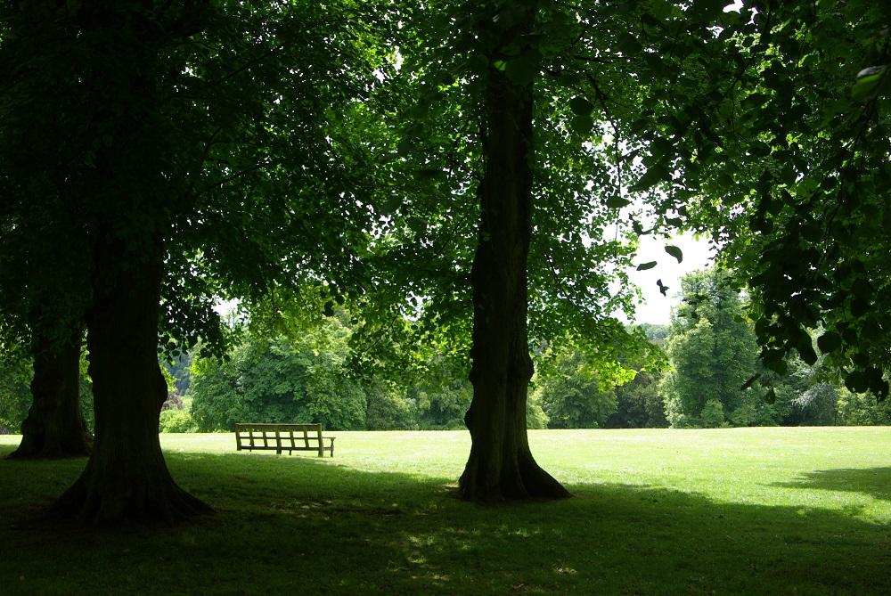心安らぐローシャム・パークの景観