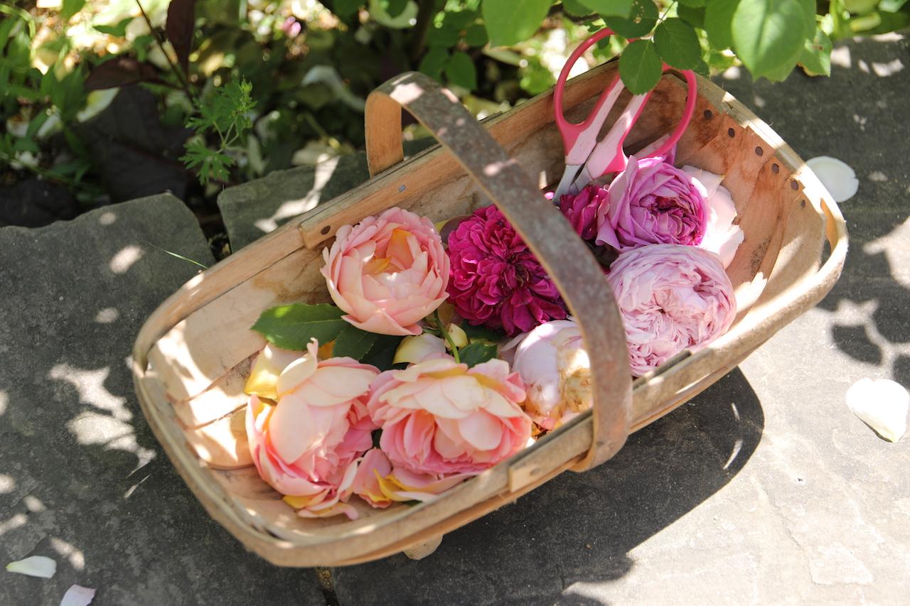 花がら摘み