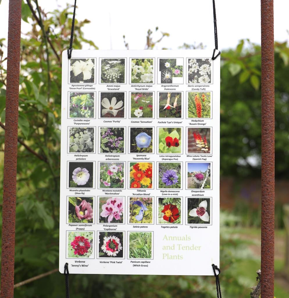 園内植物の情報板