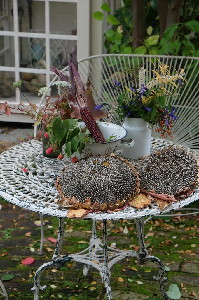 野鳥のテーブル