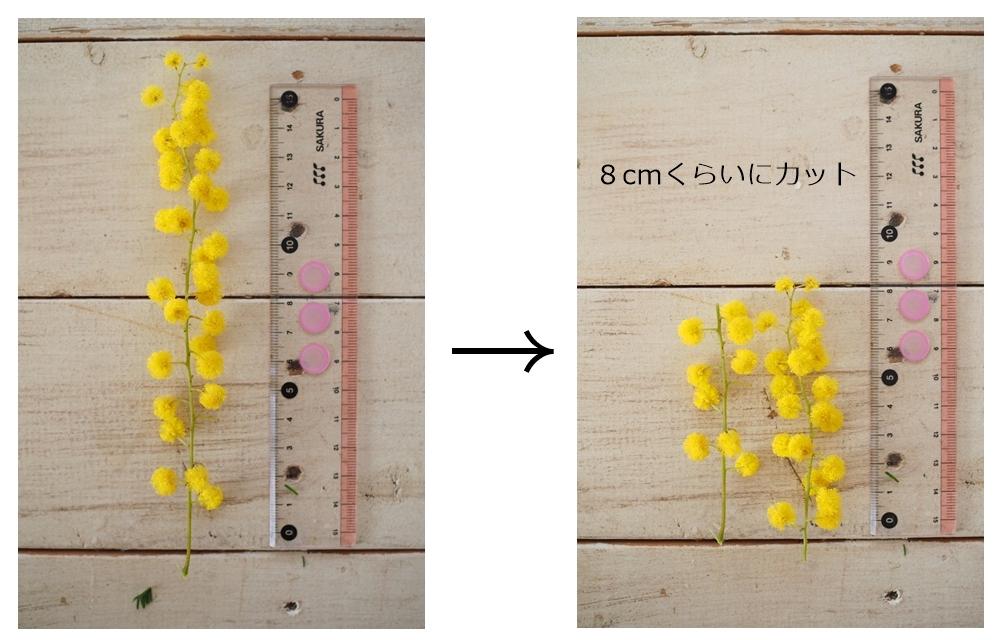 ミモザリースの作り方2-ミモザの花と葉をサイズにカットします