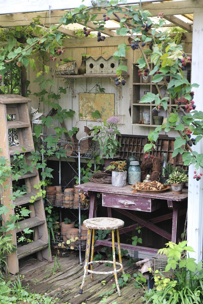 小さな庭のおしゃれなディスプレイ