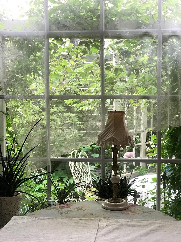 カーテン越しの庭