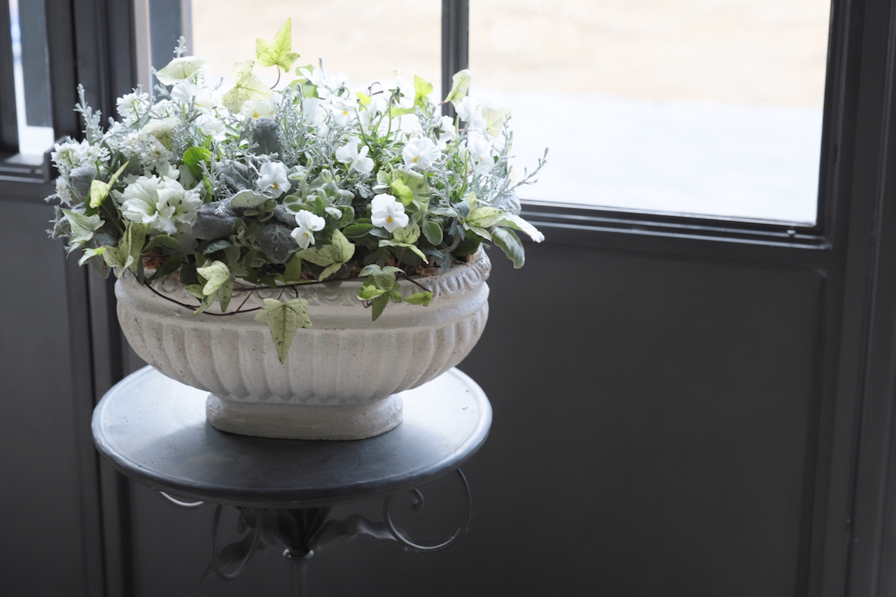 オーバル形の陶器に寄せ植え