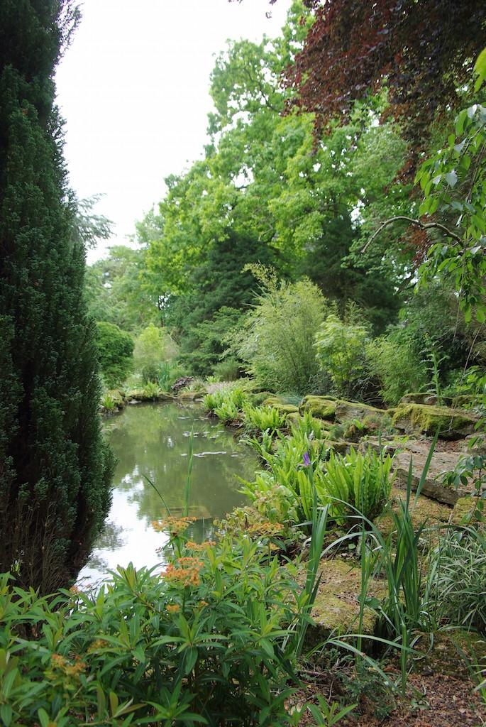 ブレナム宮殿の森