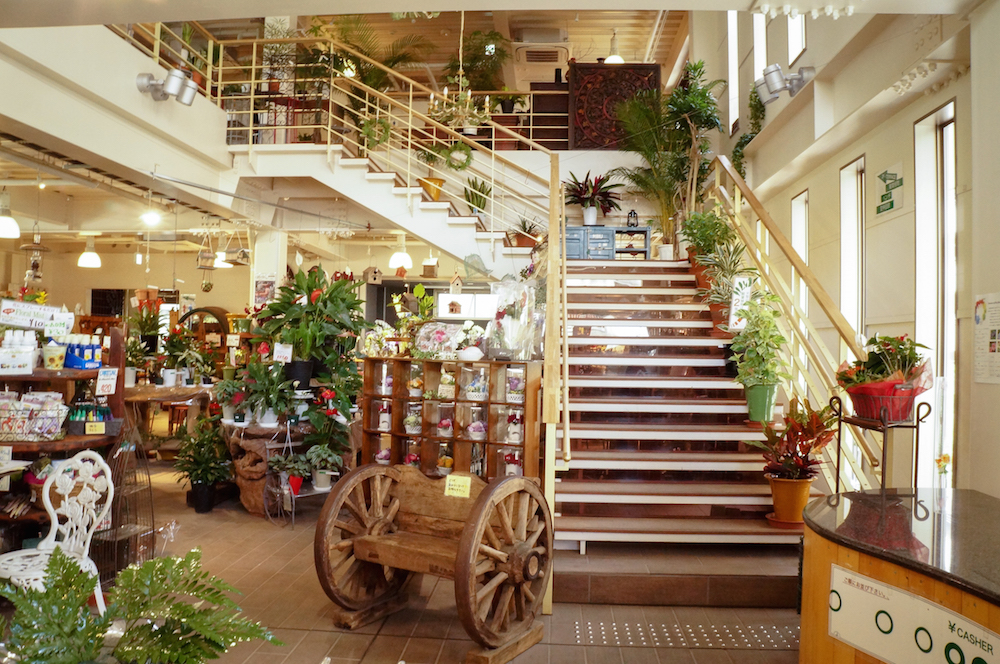 渋谷園芸の売り場