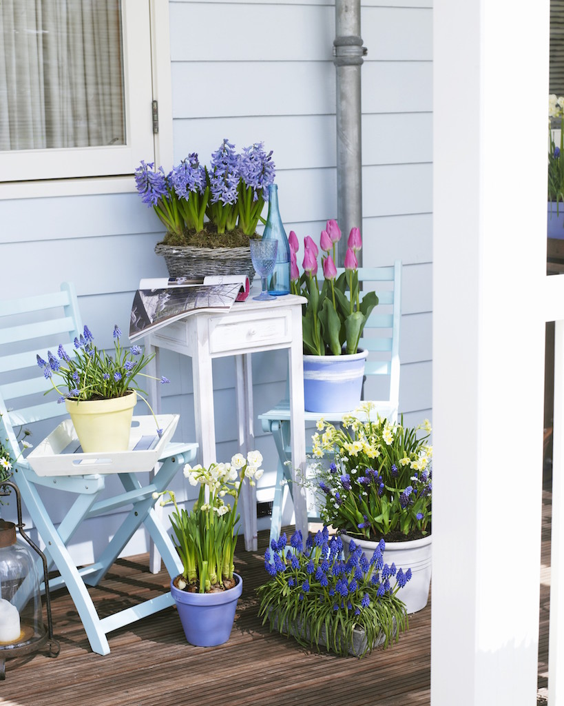 ヒヤシンスなど春の花が咲くベランダ